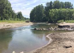 Lower Sandy River