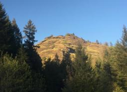 Reston Ridge in the Klamath Mountains ecoregion.