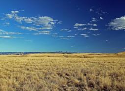 Zumwalt Prairie Plateau