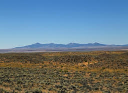 Sagebrush steppe with a backdrop of the Warner Mountains.